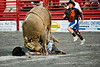 Rodeo : 1 gallery with 47 photos
